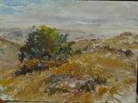Kasik -parched_hills__mid_october