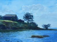 Wynne Borgman_corcoran_lagoon
