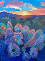 thompson-prickley_sunrise-824201615-14309