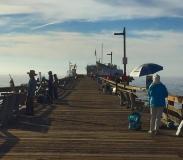 artists-on-the-wharf